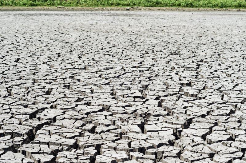 Terra seca, terra da seca imagens de stock royalty free