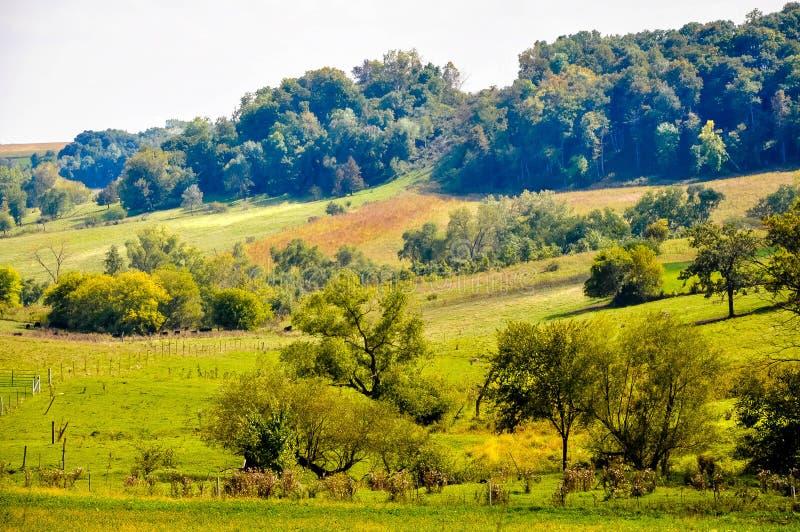 Terra splendida dell'azienda agricola immagini stock libere da diritti