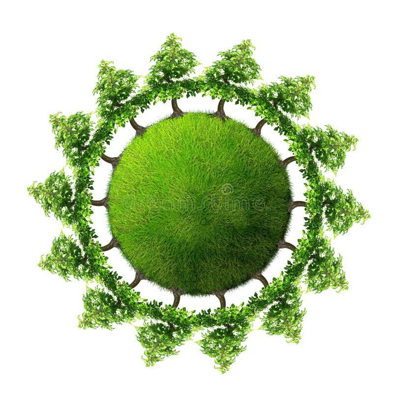Terra verde com árvores foto de stock royalty free