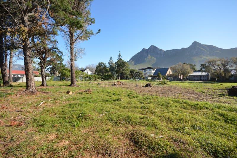 Terra verde com árvores altas e Mountain View distantes imagens de stock royalty free