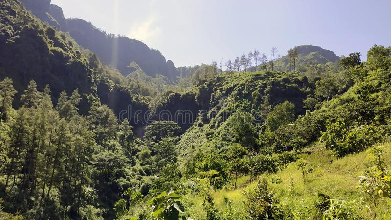 A terra verde na montanha foto de stock