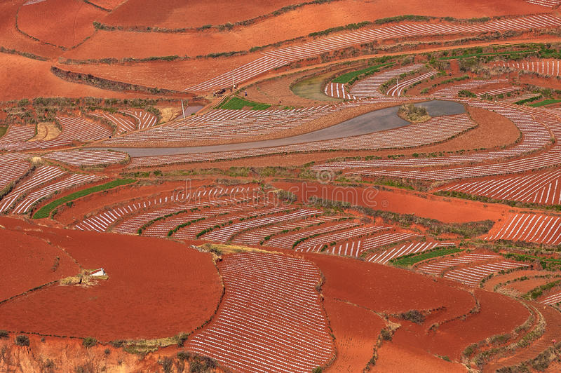 Terra vermelha ou paleta chamada de Deus fotografia de stock royalty free