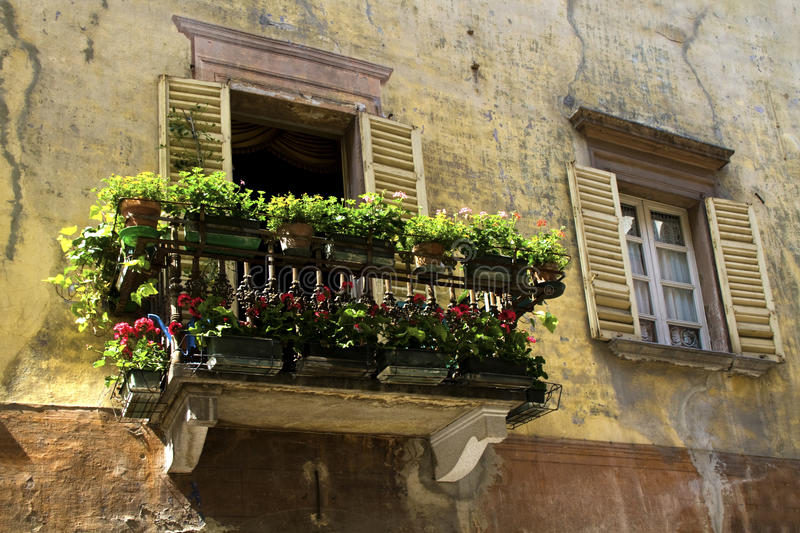 Terrace With Flowers Royalty Free Stock Photography