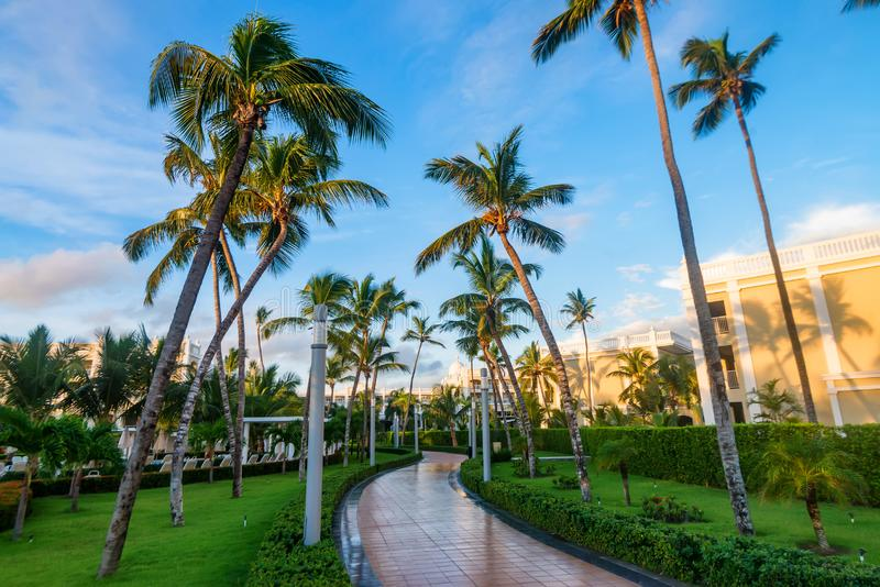 Terrace of Luxury tropical hotel in Dominican Republic. Road ion territory of spa luxury tropical hotel in Punta Cana, Dominican Republic royalty free stock photo