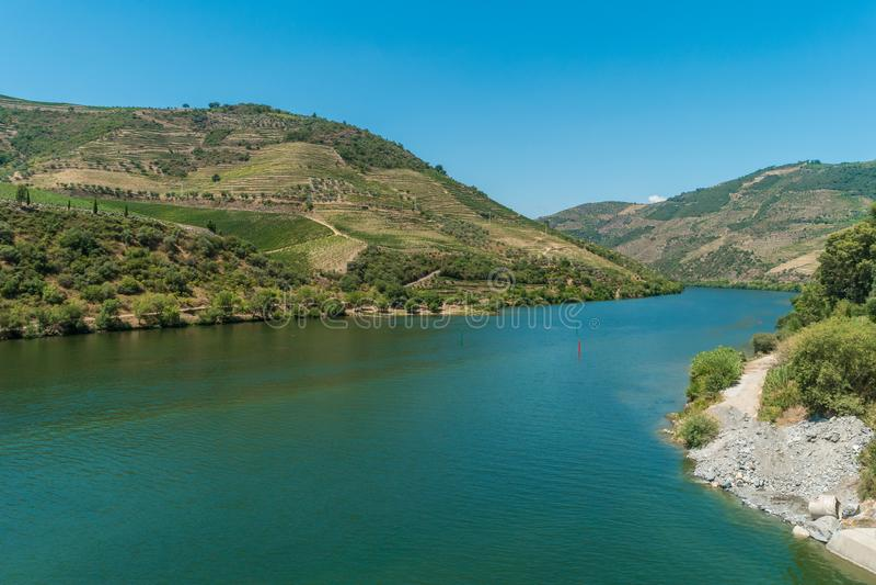 Terraced αμπελώνες στην περιοχή κρασιού Alto Douro κοιλάδων Douro μέσα ούτε στοκ εικόνες με δικαίωμα ελεύθερης χρήσης
