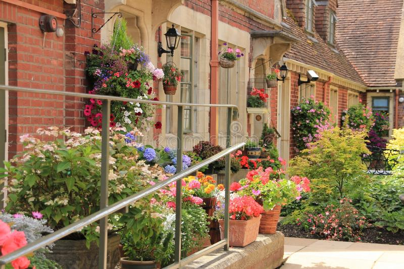 Cottage garden in the village Salisbury in England in the summer. royalty free stock photo