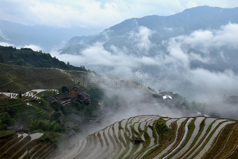 The terraced paddy fields in Guangxi Zhuang Autonomous Region in China hidden in the clouds. The terraced paddy fields in Guangxi Zhuang Autonomous Region in stock images