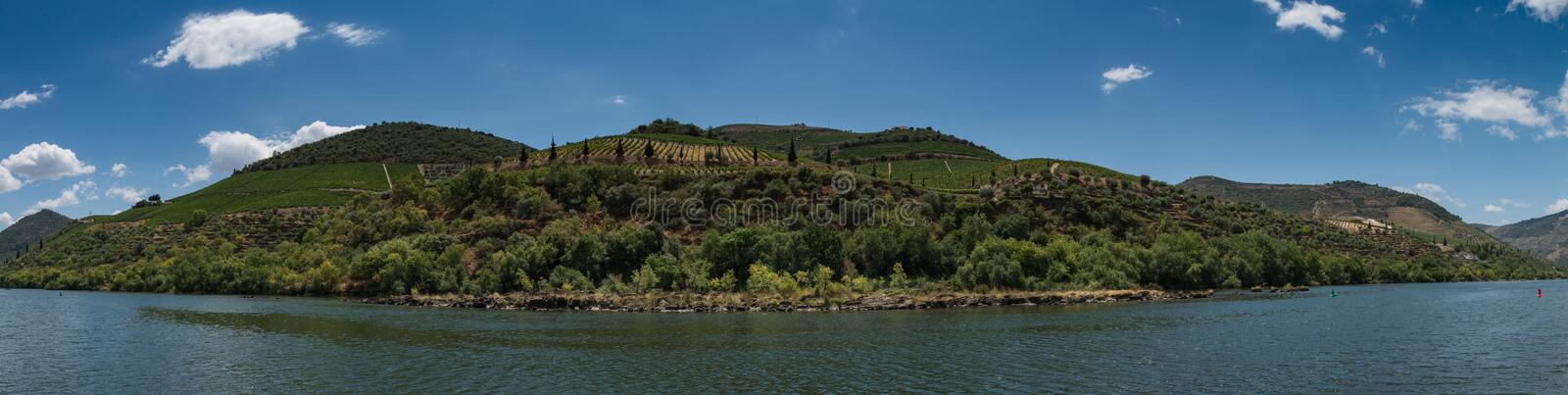 Vineyars in Douro Valley. Terraced vineyards in Douro Valley, Alto Douro Wine Region in northern Portugal, officially designated by UNESCO as World Heritage Site stock photo
