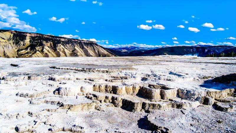 Terraces of Blue Spring on the Main Terrace in the Mammoth Springs area of Yellowstone National Park, USA. Terraces created by mineral deposits of Blue Spring on stock images