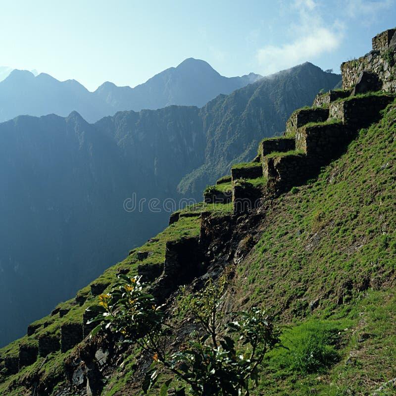 Terraces Machu Picchu royalty free stock photos