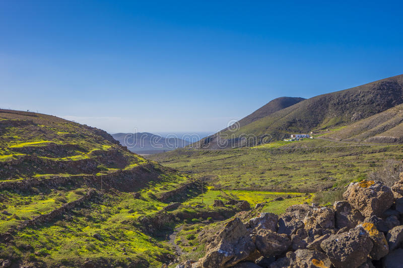 Terraces mountains and sea in Fuerteventura Las Palmas Canary I. Green terraces mountains and sea in Fuerteventura Las Palmas Canary Islands Spain royalty free stock photo