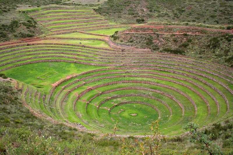 Terraces of Pisac in Urubamba valley stock photo