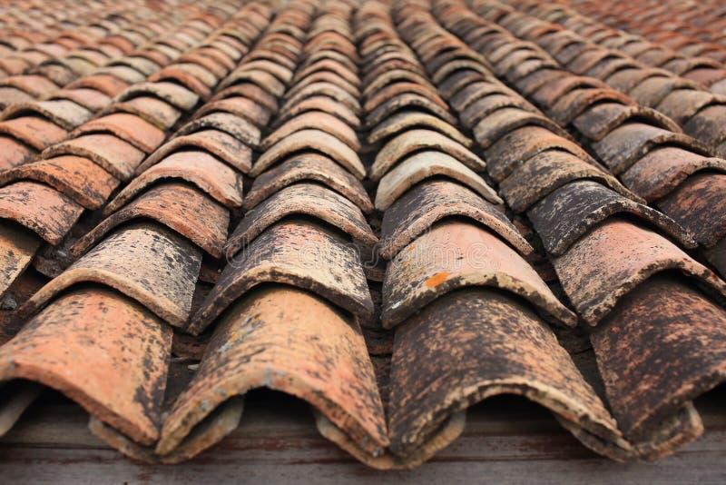 Terracota belade med tegel taktextur arkivbilder