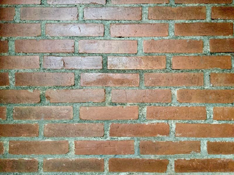 Terracotta Bakstenen muur stock foto