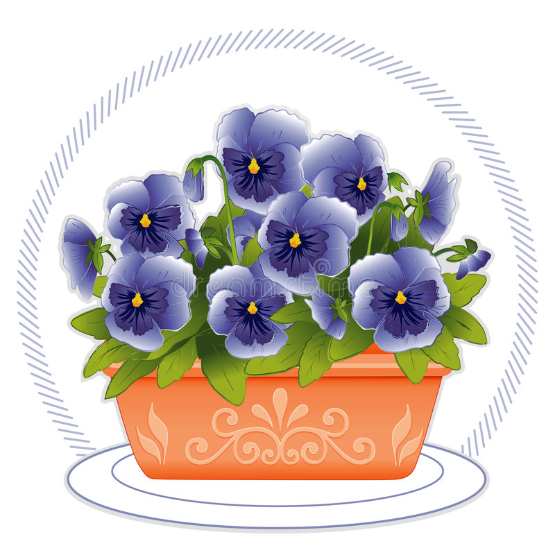 Download Terracotta Planter With Sky Blue Pansies Stock Vector - Image: 4134318