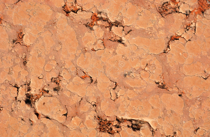 Download Terracotta Tile stock photo. Image of sandstone, design - 5816006