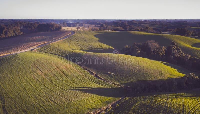 terrain royaltyfria foton