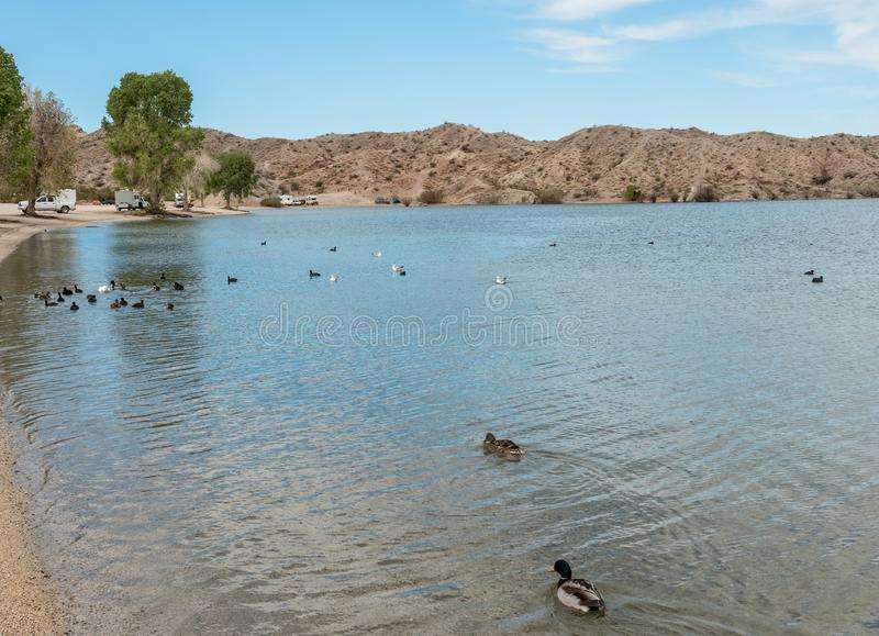 Terrain de camping de crique de téléphone, Mohave de lac images stock