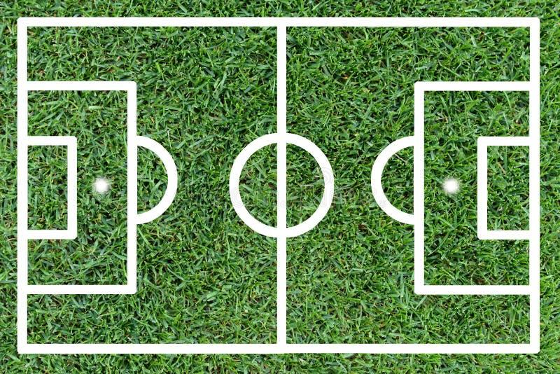 Terrain de football sur l'herbe verte illustration de vecteur