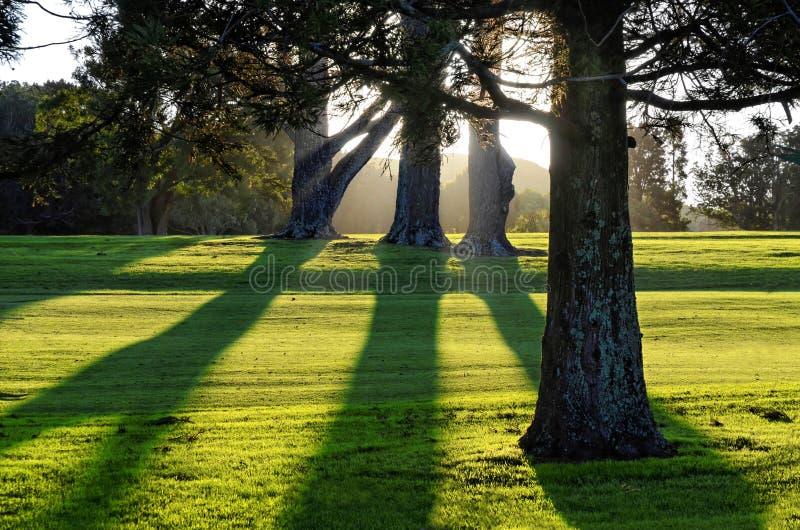 Terrain de golf à Auckland, Nouvelle-Zélande photographie stock