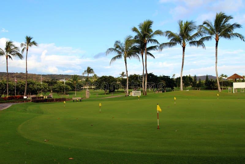 Download Terrain de golf photo stock. Image du vert, hawaï, pôle - 87700772