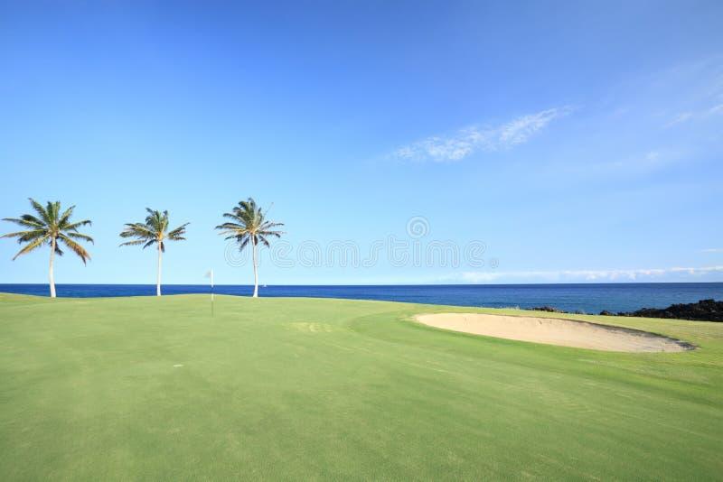 Terrain de golf dans les tropiques image stock