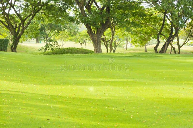 Terrain de golf en Thaïlande image libre de droits