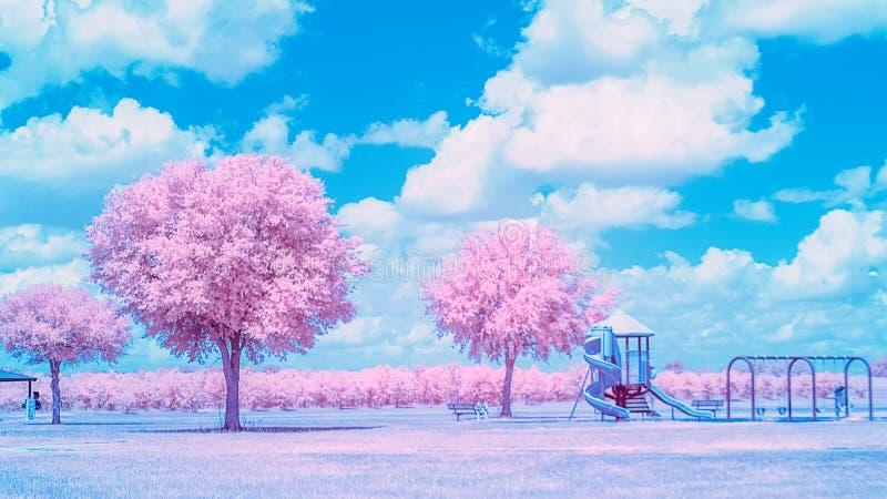 Terrain de jeu infrarouge de parc sur un ensoleillé, jour d'été photographie stock libre de droits