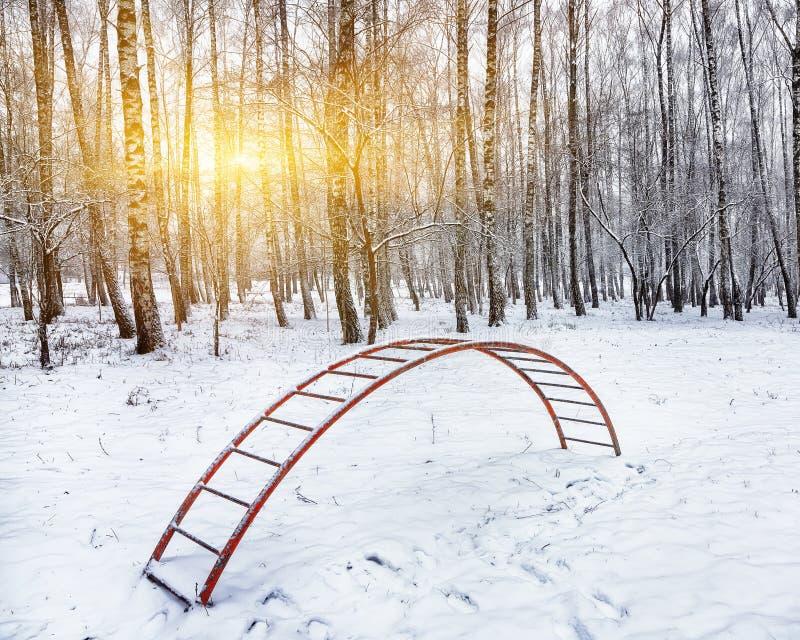 Terrain de jeu parmi les arbres grands sous la neige échelle couverte de photographie stock libre de droits
