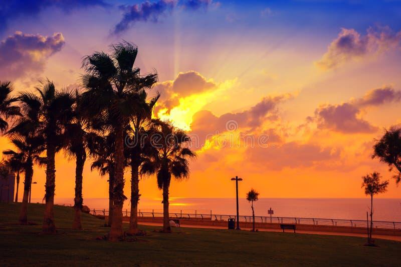 Terraplenagem no por do sol imagens de stock royalty free