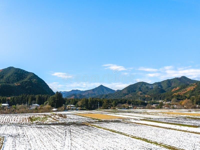Terras rurais japonesas com primeira neve fotografia de stock royalty free