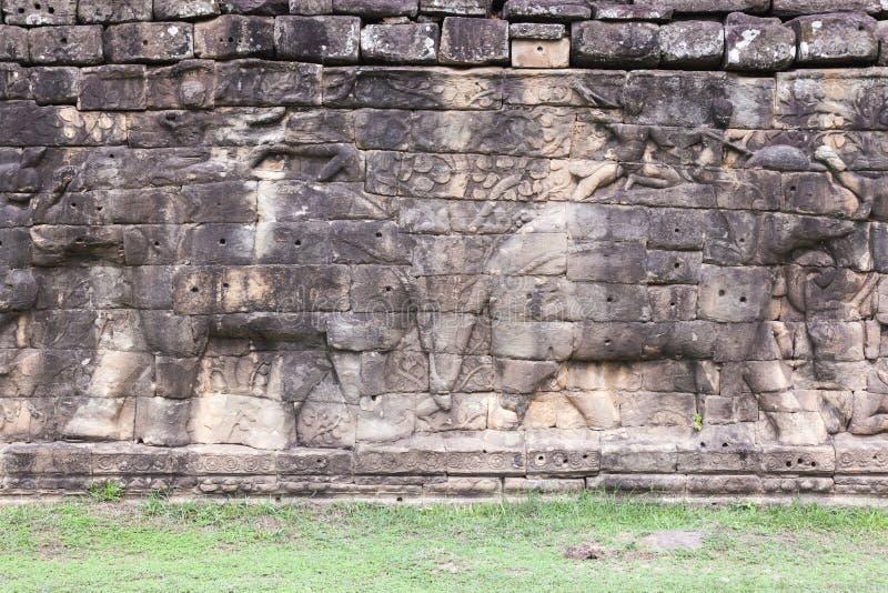 Terrass av elefanter royaltyfri bild