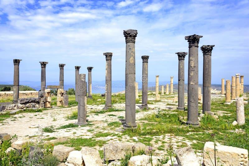 Terrasse bizantine d'église chez Umm Qais, Jordanie images libres de droits