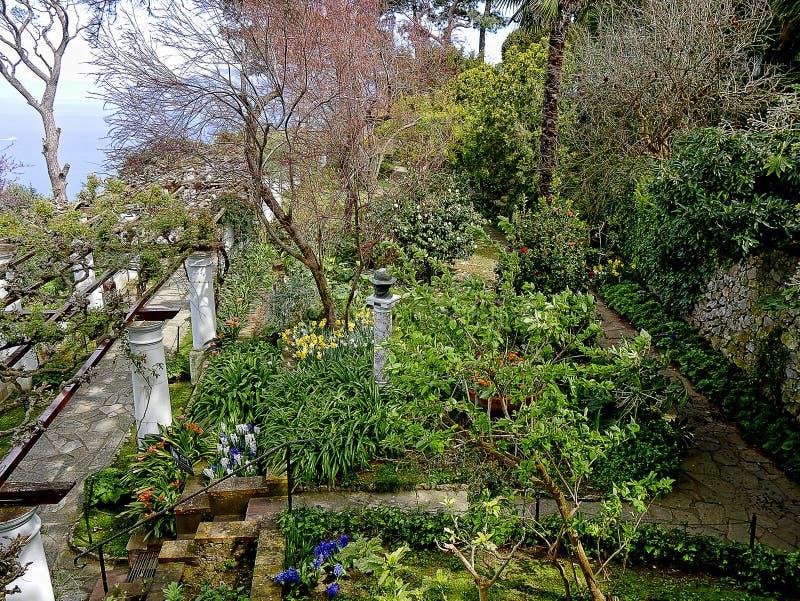 Terrasse d'un jardin d'une villa dans Anacapri sur l'île de Capri dans la baie de Naples Italie photos stock