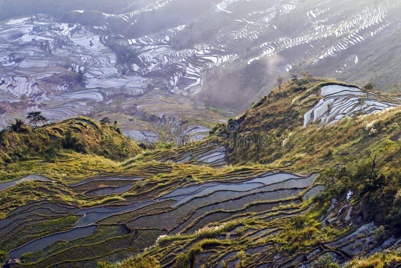 Terrasse de Hani, Yunnan, China011 photos libres de droits