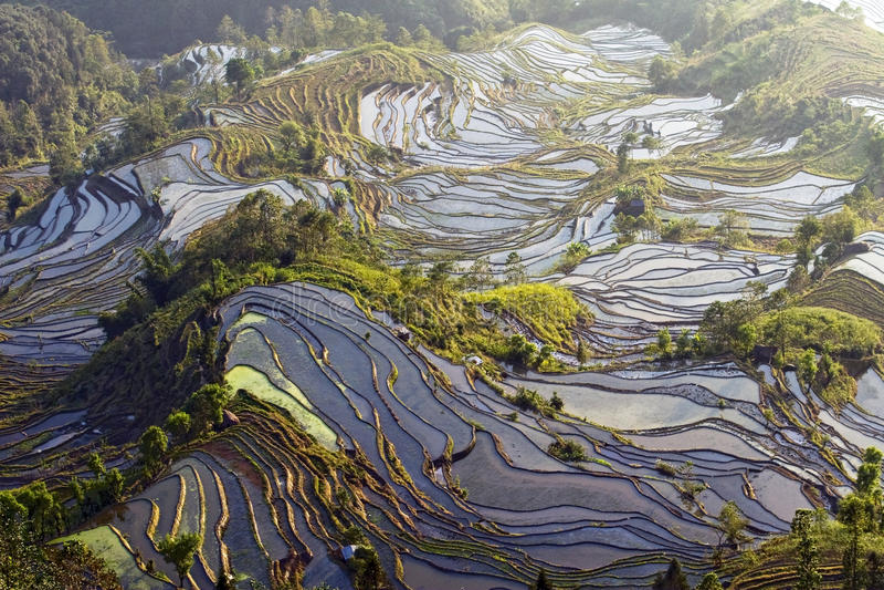 Terrasse de Hani, Yunnan, China04 photographie stock libre de droits