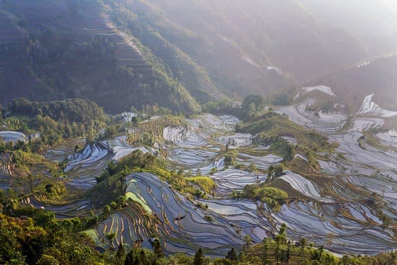Terrasse de Hani, Yunnan, China07 photos libres de droits
