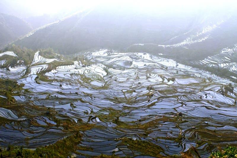 Terrasse de Hani, Yunnan, China09 photos libres de droits