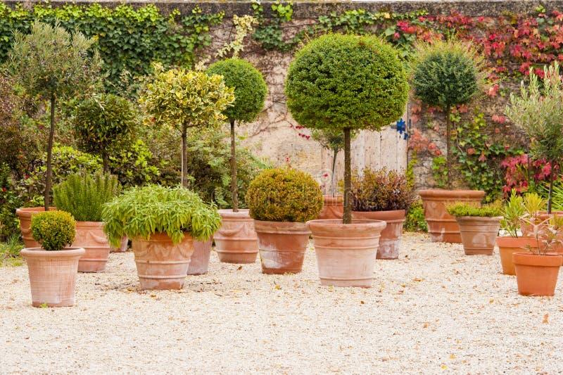 Download Mediterranean Patio With Flowerpots Stock Photo - Image: 23939856