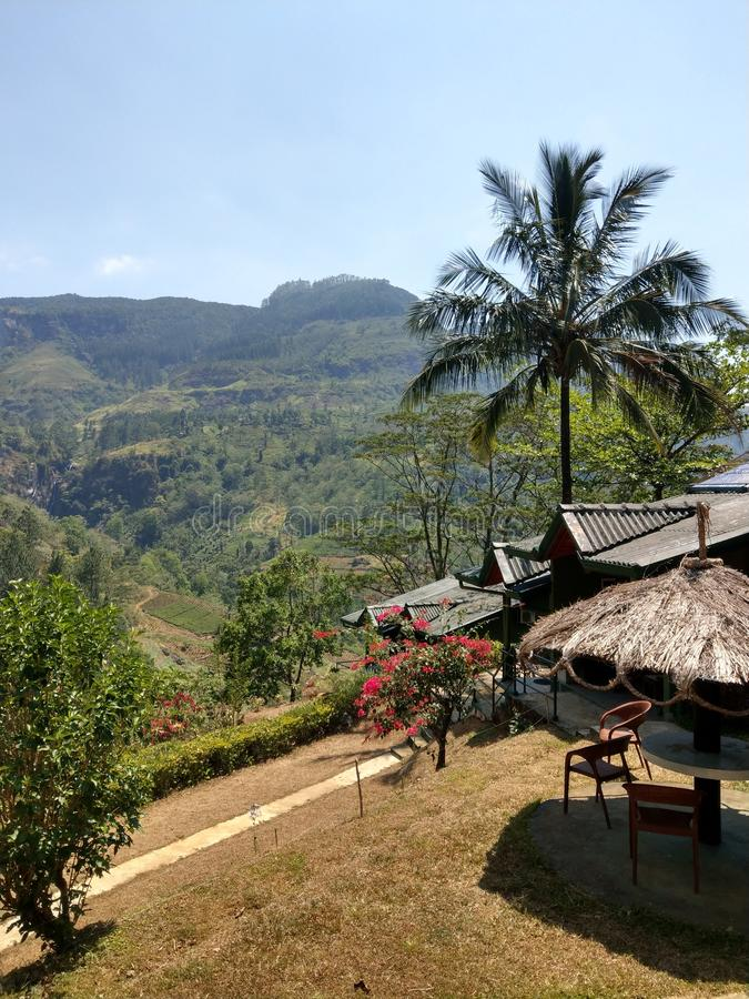 Terrasse nahe Ramboda-Fällen in Sri Lanka lizenzfreies stockfoto