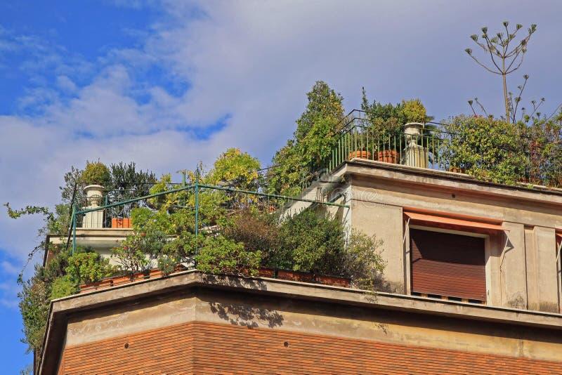 Terrasse verte photographie stock