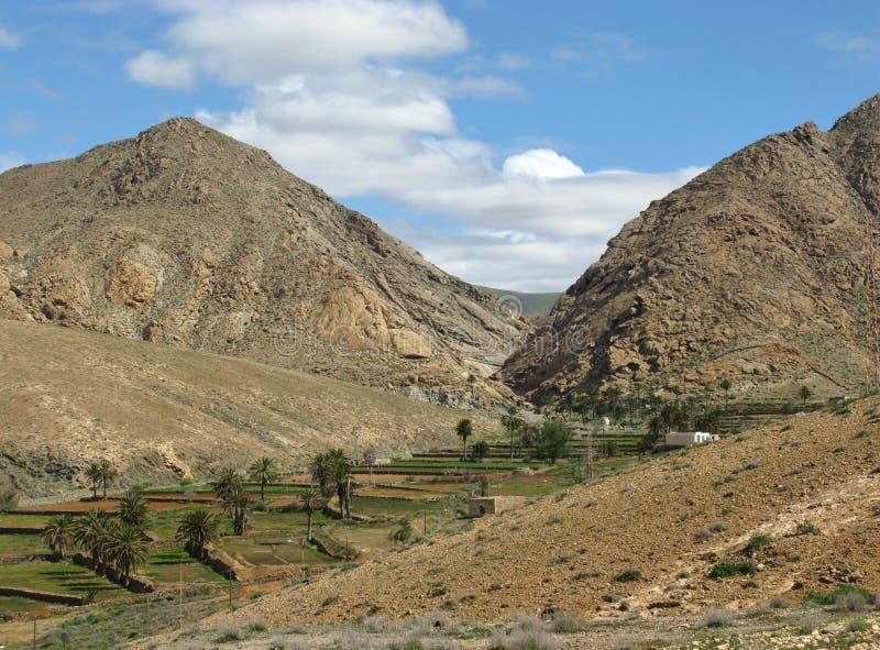 Terrassen in de bergen van Fuerteventura royalty-vrije stock afbeelding