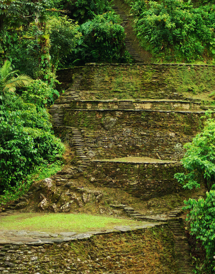 Terrassen in Noordelijk Colombia stock foto's