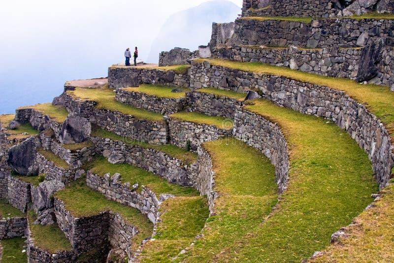Terrassen van Machu Picchu stock foto's