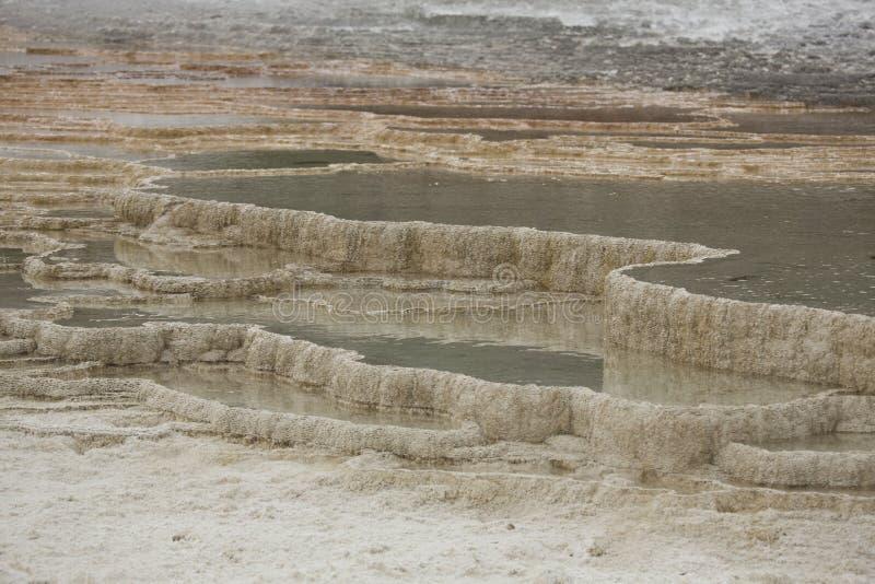 Terrassen von geothermischen Pools bei Mammoth Hot Springs, Yellowstone lizenzfreie stockfotografie