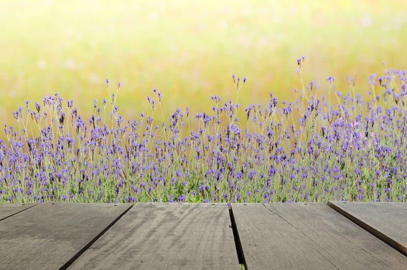 Terrassenholz und schöne Wiese für Naturhintergrund stockfoto