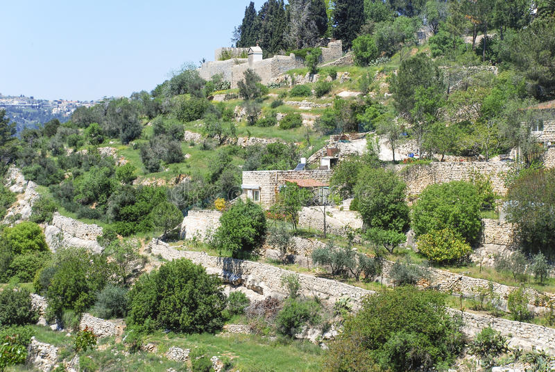 Terrasser i Jerusalem arkivbilder