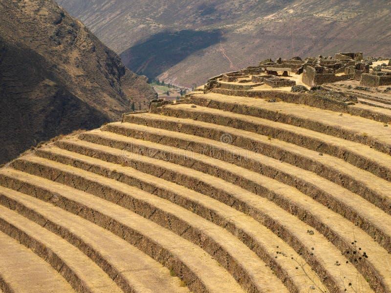 Terrasser i Peru royaltyfri fotografi