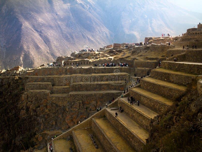 Terrasser i Peru arkivbild