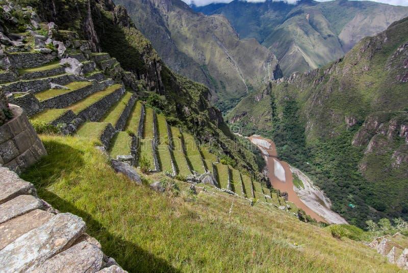 Terrasser och flodvaley nära Machu Picchu arkivbild